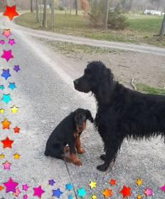 hogan and mom outside